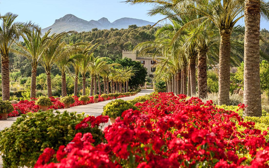 FINESSE, Magazin, Travel, Gourmet, Food, Mallorca, Hotel, Castell Son Claret, Luxusurlaub, Luxusrefugium, Auffahrt, Allee